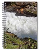 Tongass National Forest Spiral Notebook