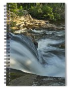 Top Of The Dog 4191 Spiral Notebook
