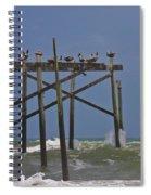 Topsail Ocean City Pelicans Spiral Notebook