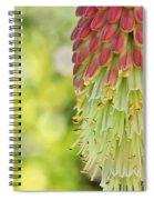 Torch Spiral Notebook
