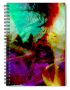 Touch Of The Sun Spiral Notebook