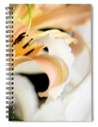Touching Softly Spiral Notebook