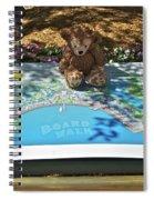 Tourist Bear Spiral Notebook