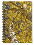Towering Autumn Aspens With Deep Blue Sky Spiral Notebook