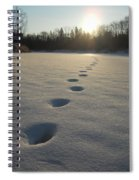 Tracks Into The Sunrise Spiral Notebook