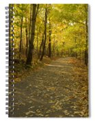 Trail Scene Autumn Abstract 1 Spiral Notebook