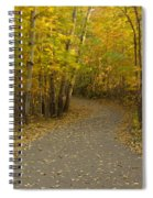 Trail Scene Autumn Abstract 3 Spiral Notebook