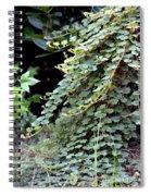 Trailing Green Spiral Notebook