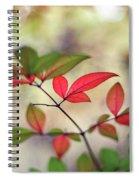 Tranquiliser Spiral Notebook