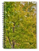 Transition Of Autumn Color Spiral Notebook