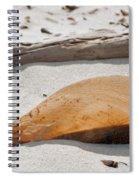 Transparency Spiral Notebook