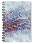 Trapped In Winter Spiral Notebook