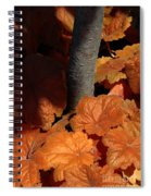 Tree And Pumpkin-like Leaves Spiral Notebook