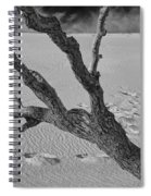 Tree Branch And Footprints On Sleeping Bear Dunes Spiral Notebook