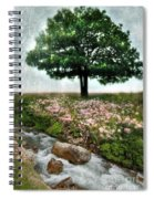 Tree By Stream Spiral Notebook