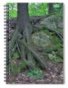 Tree Growing Over A Rock Spiral Notebook