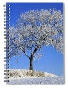 Tree In Winter, Co Down, Ireland Spiral Notebook