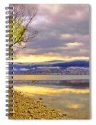 Tree Light Spiral Notebook