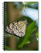 Tree Nymph Spiral Notebook
