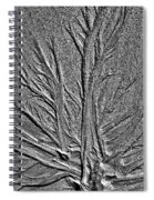 Tree Of Life In The Sands Of Time Hdr Conversion Spiral Notebook