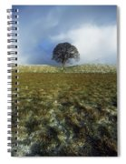 Tree On A Landscape, Giants Ring Spiral Notebook
