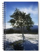 Tree On A Snow Covered Landscape Spiral Notebook