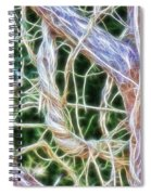 Tree On Fire Spiral Notebook