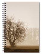 Tree Silhouette In Fog Spiral Notebook