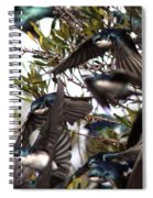 Tree Swallow - All Swallowed Up Spiral Notebook