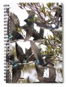 Tree Swallow Frenzy Spiral Notebook