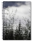 Trees And Clouds Spiral Notebook