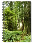 Trees At Cathedral Grove Spiral Notebook