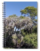 Trees Decorated With Moss Spiral Notebook