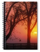 Trees In The Sunrise Spiral Notebook
