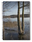 Trees On Flooded Riverbank No.1001 Spiral Notebook