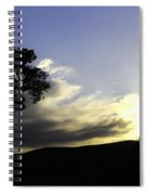 Trees On The Edge Spiral Notebook