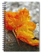 Tremella Mesenterica - Orange Brain Fungus Spiral Notebook