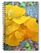 Tremella Mesenterica - Yellow Brain Fungus Spiral Notebook