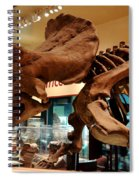 Triceratops At The Smithsonian Spiral Notebook