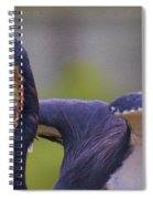 Tricolored Heron About To Fly Spiral Notebook