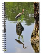 Tricolored Reflection Spiral Notebook