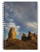 Trona Pinnacles 4 Spiral Notebook