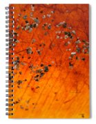 Tropical Almond Leaf With Sand 1 Spiral Notebook