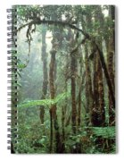 Tropical Cloud Forest Spiral Notebook