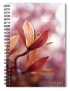 Tropical Grace Spiral Notebook
