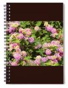 Tropical Lantana Spiral Notebook