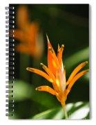 Tropical Orange Heliconia Flower Spiral Notebook