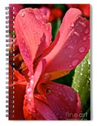 Tropical Rose Canna Lily Spiral Notebook