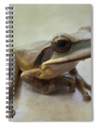 Tropical Tree Frog II Spiral Notebook