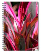 Tropical Vision II Spiral Notebook